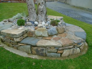 Reclaimed Stoneat Base of Tree